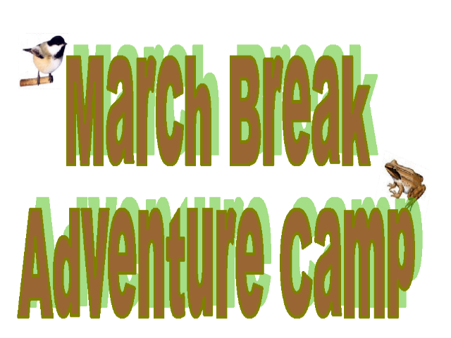 Heartland Forest March Break Camp