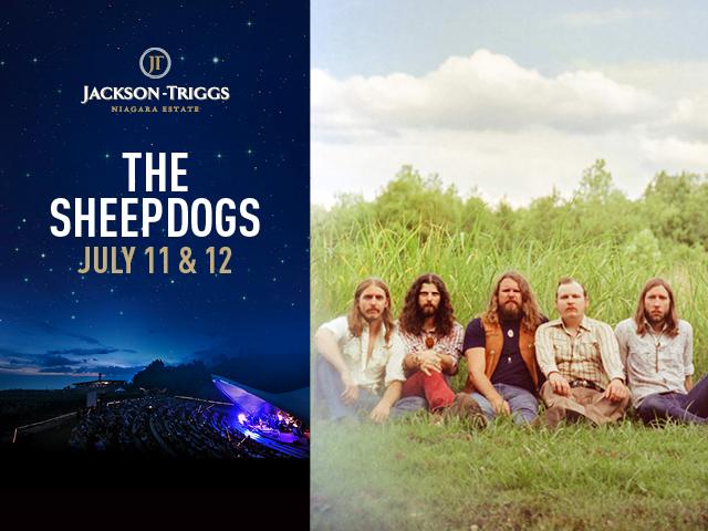 JACKSON TRIGGS - SHEEPDOGS