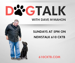 610 Radio Dog Talk